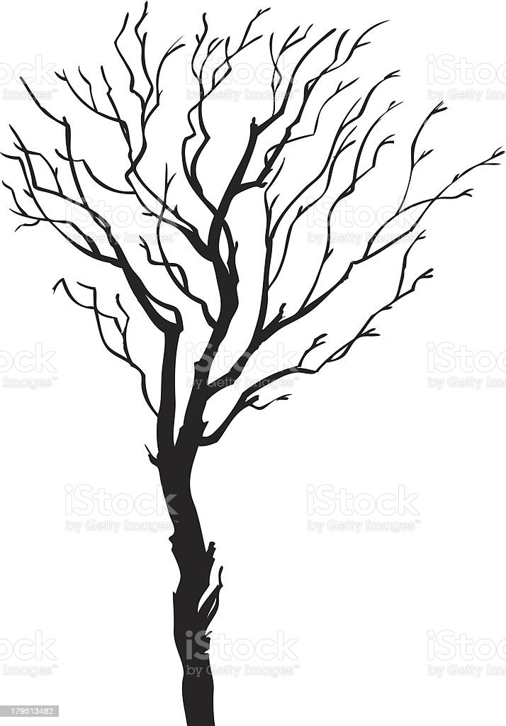 tree silhouette royalty-free tree silhouette stock vector art & more images of back lit