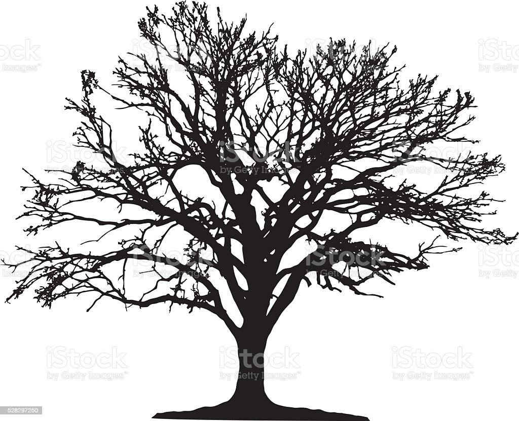 Tree silhouette vector art illustration