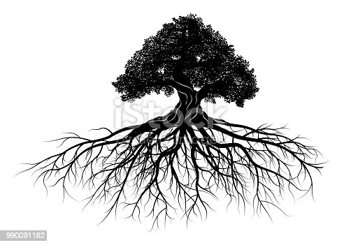 tree silhouette on white background. Vector illustration.
