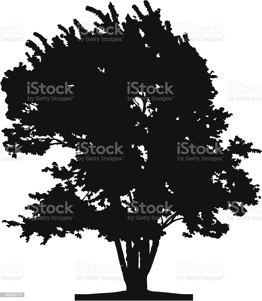 Tree silhouette, Vector royalty-free tree silhouette vector stock vector art & more images of art and craft