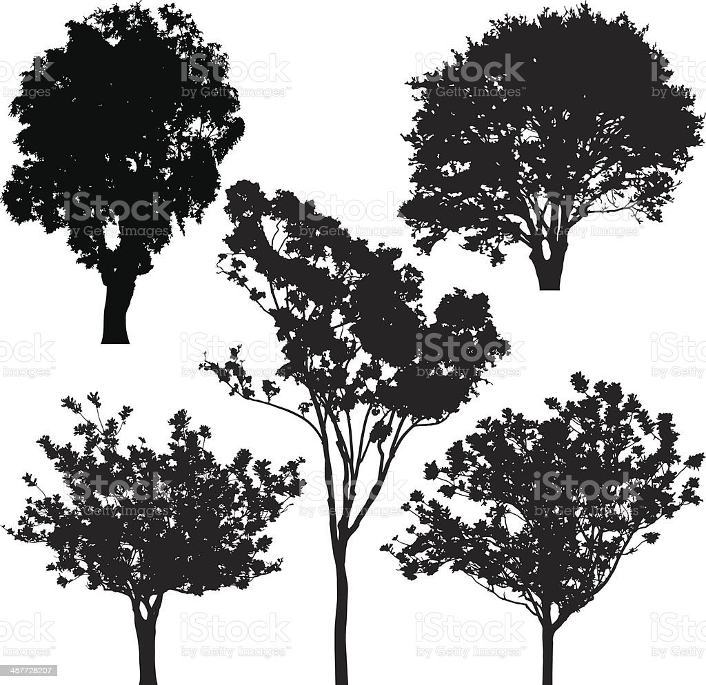 tree silhouette vector royalty free stock vector art