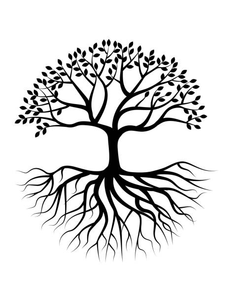 tree silhouette with root - trees stock illustrations
