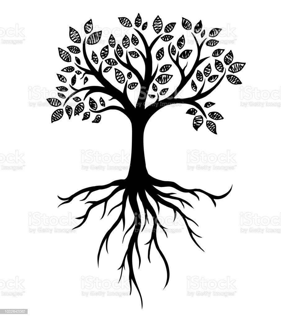 royalty free silhouette of the how to draw tree roots clip
