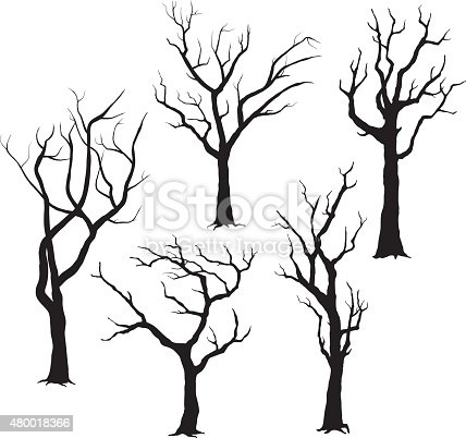 A vector illustration of Tree Silhouettes- Illustration.
