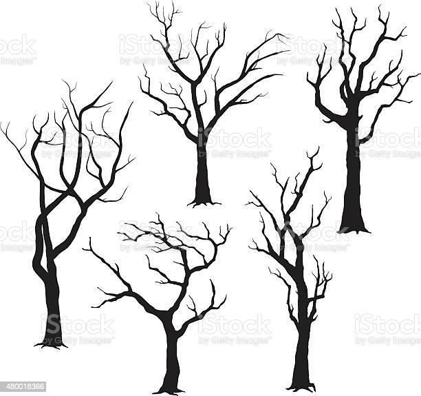 Tree silhouettes illustration vector id480018366?b=1&k=6&m=480018366&s=612x612&h=wu2wh87d jr4tmwiaoszklarx qgtl ogm87hzcxo0s=
