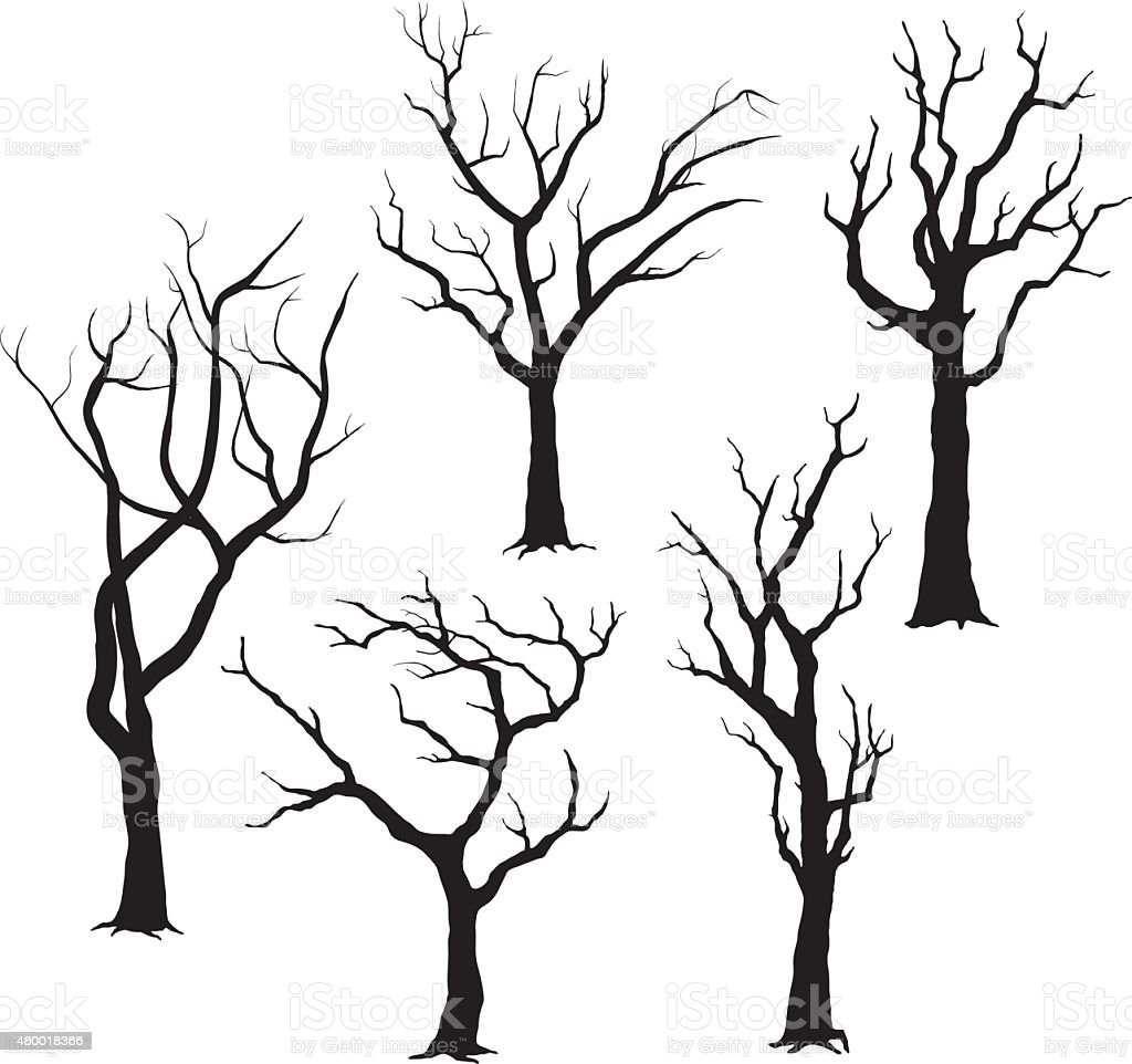 Arbre Silhouettes- Illustration - Illustration vectorielle