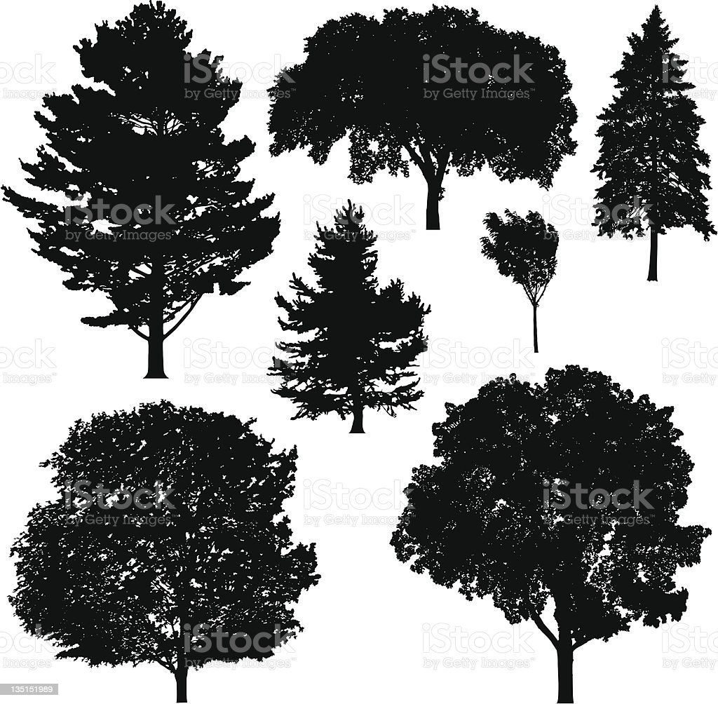 Tree Silhouettes royalty-free stock vector art