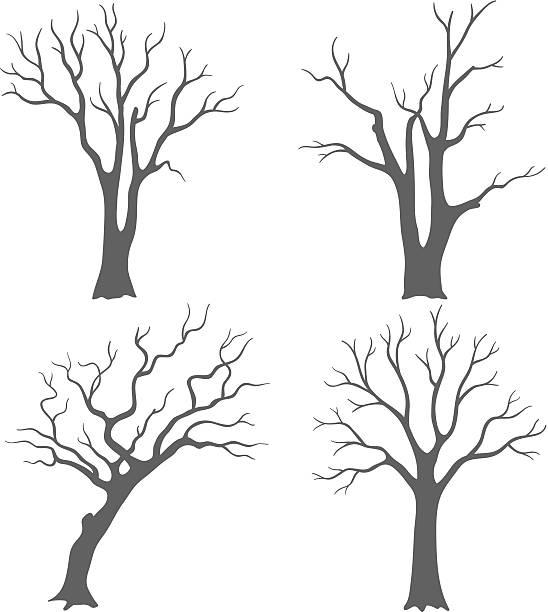 baum silhouetten - winterruhe stock-grafiken, -clipart, -cartoons und -symbole