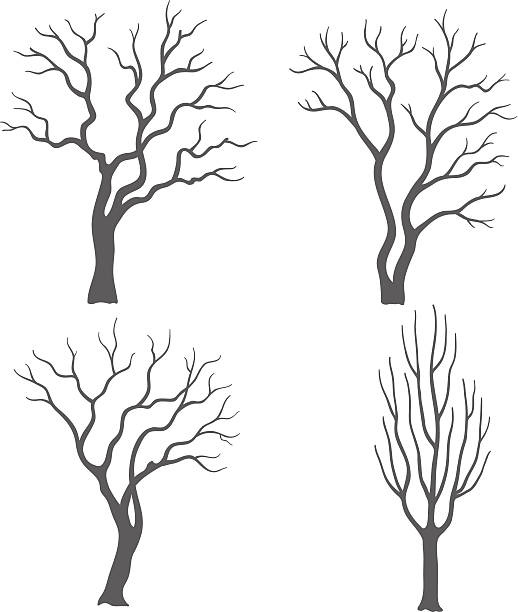 Silhouette di albero - illustrazione arte vettoriale