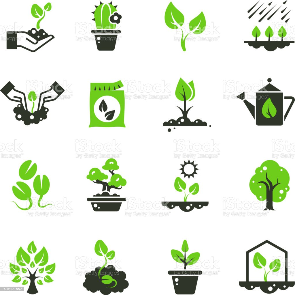 Tree sprout and plants vector icons. Seedling and hand planting pictograms vector art illustration