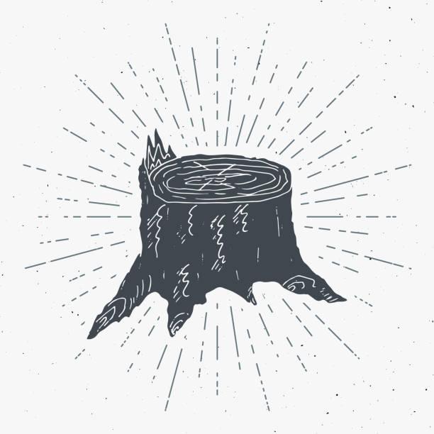 tree stump vintage label, hand drawn sketch, grunge textured retro badge, typography design t-shirt print, vector illustration - wood texture stock illustrations