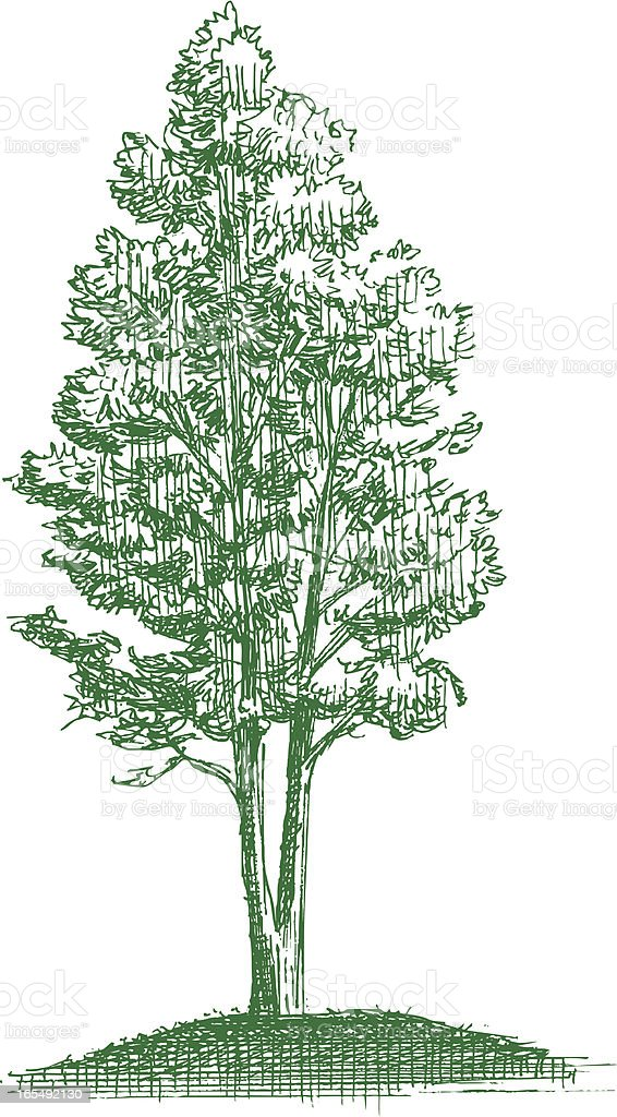 Tree - Symbol of Life royalty-free tree symbol of life stock vector art & more images of cut out