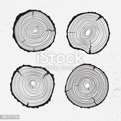 istock Tree trunk cross section, line design 691471750