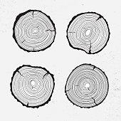 Tree trunk cross section, line design