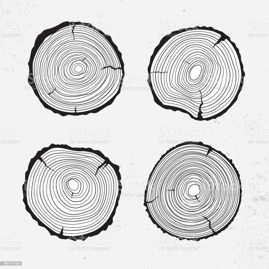 Tree trunk cross section, line design vector art illustration