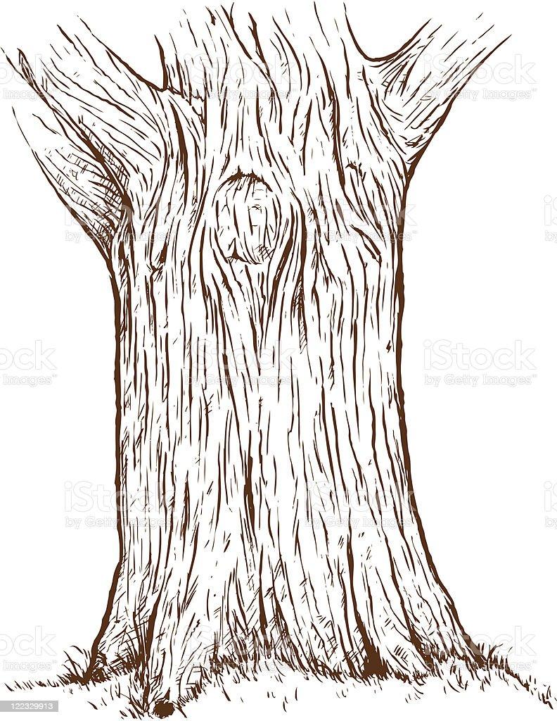Tree trunk vector art illustration