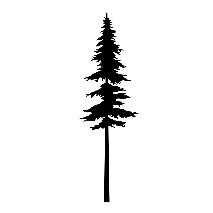 f40c559c6 Tree Vector Black Silhouette Tribal For Design Idea Tattoo And Illustration  Pine Icon Symbol Isolated Cypress Template Vector For Forest Creation ...