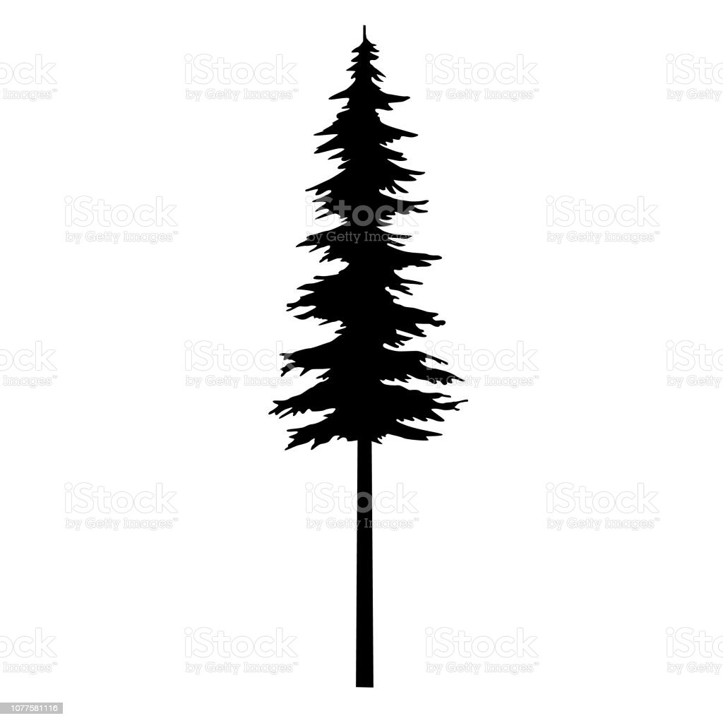 Tree Vector Black Silhouette Tribal For Design Idea Tattoo And