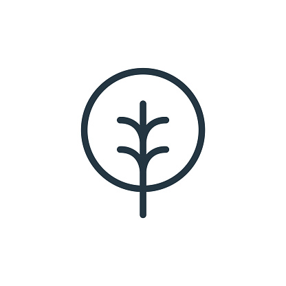 tree vector icon. tree editable stroke. tree linear symbol for use on web and mobile apps, logo, print media. Thin line illustration. Vector isolated outline drawing.
