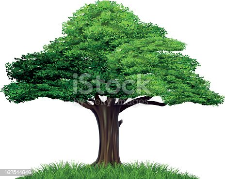 vector file of tree