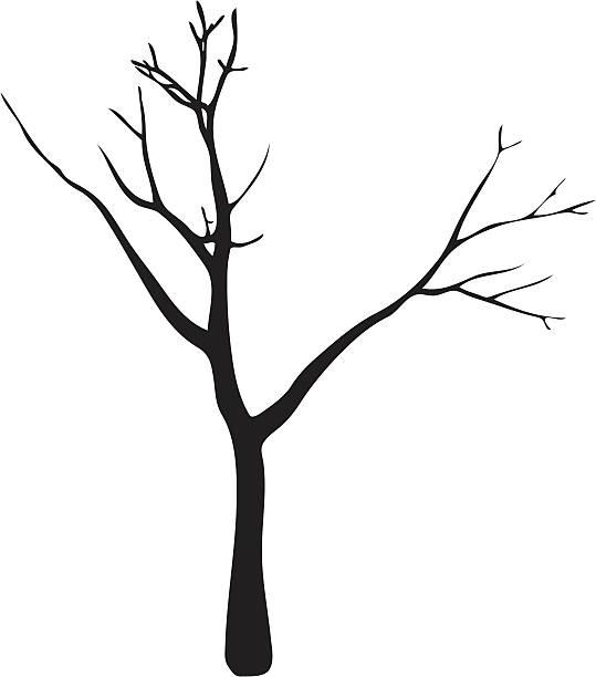 tree - winterruhe stock-grafiken, -clipart, -cartoons und -symbole