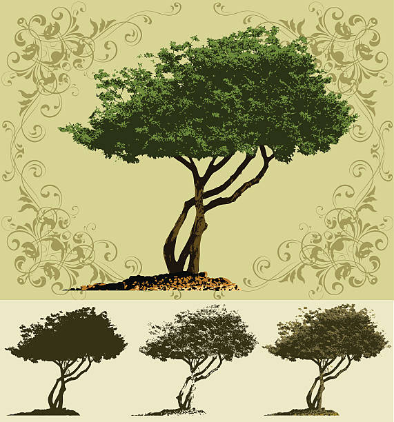 Tree vector art illustration