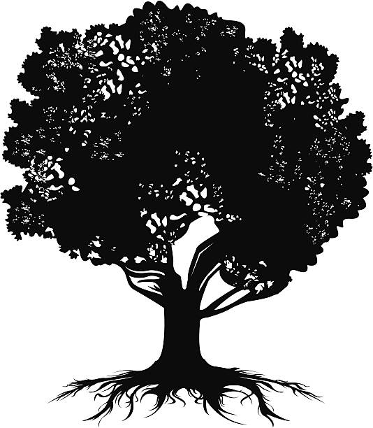 Silhouette Of A Tree Roots Clip Art, Vector Images ...