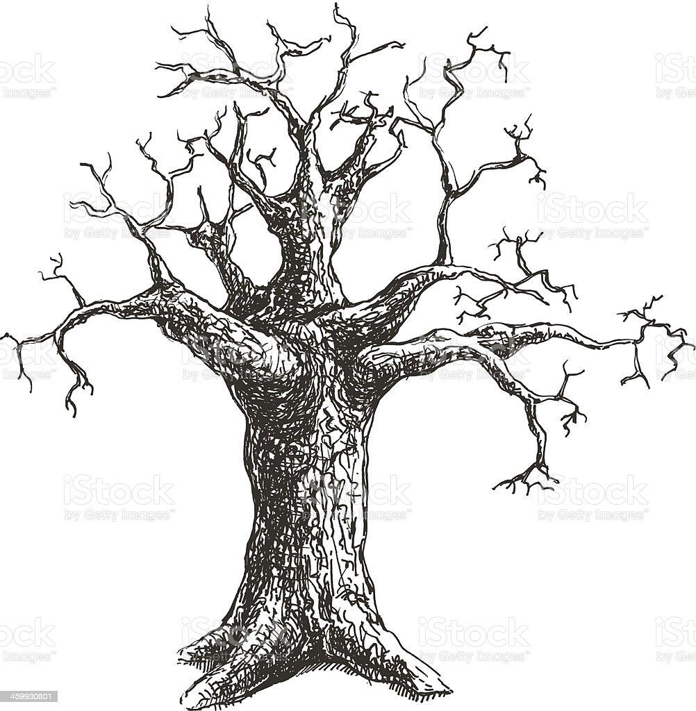 Tree vector illustration design vector art illustration