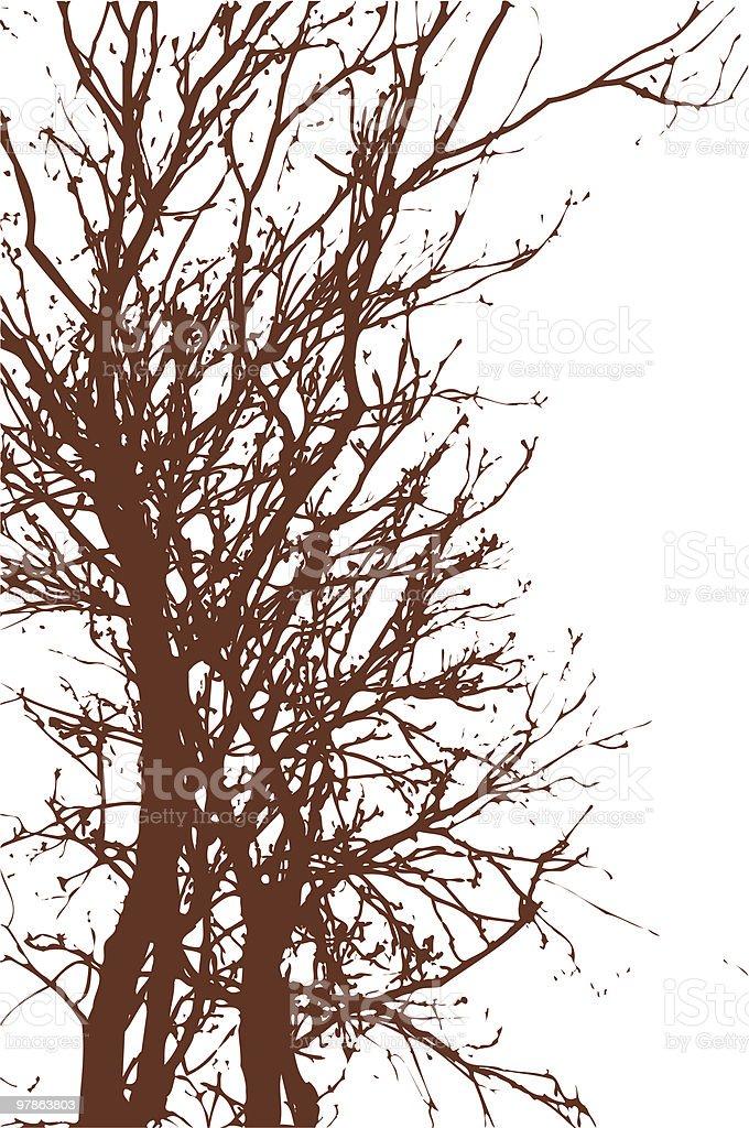 Tree - vector royalty-free stock vector art
