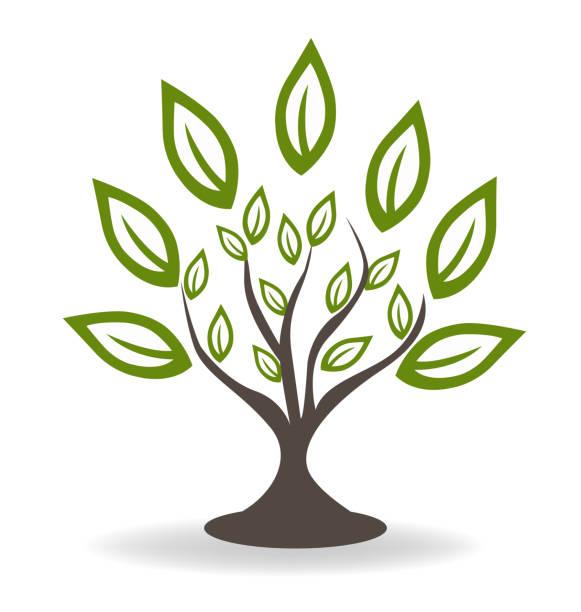 baum mit schönen grünen blätter konzept symbol umgebungsvorlage - stammes tattoos stock-grafiken, -clipart, -cartoons und -symbole