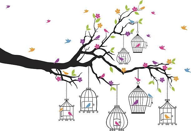 illustrations, cliparts, dessins animés et icônes de arbre et se compose de cages avec des oiseaux, vecteur - dessin cage a oiseaux