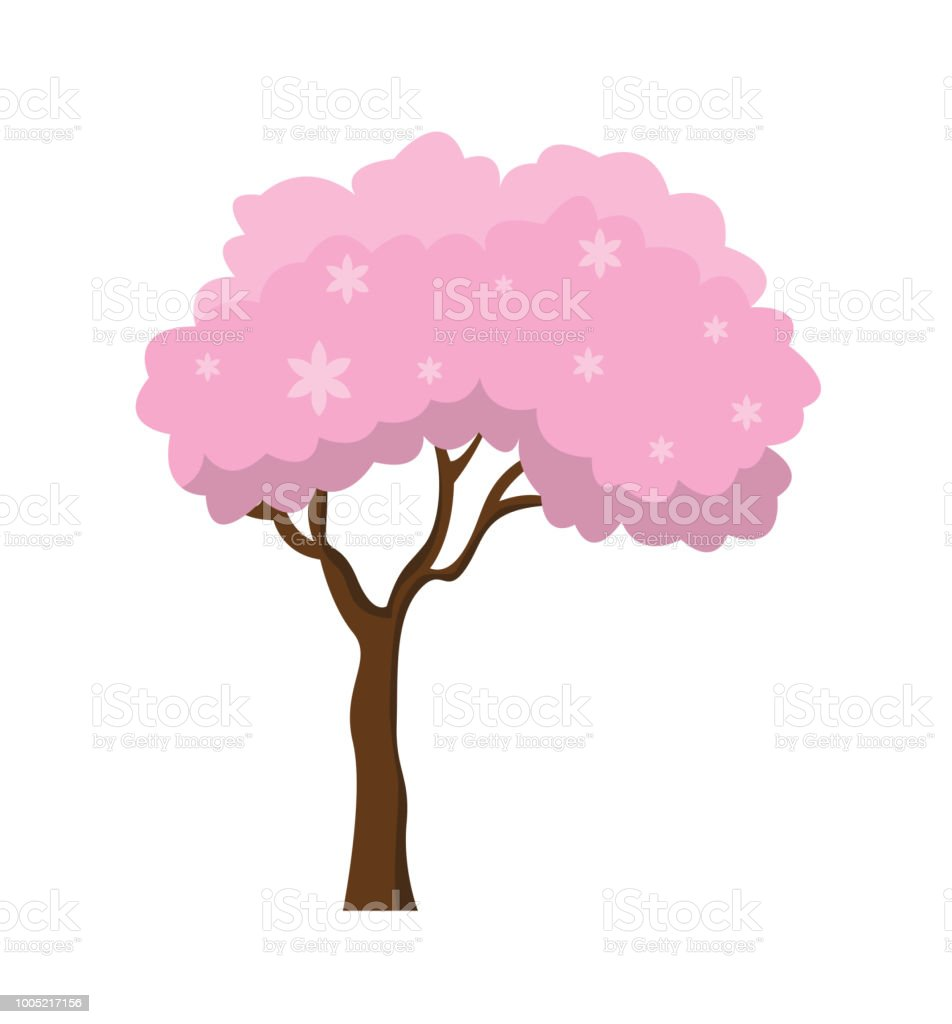 Tree With Fantastic Pink Crown Isolated On The White Background