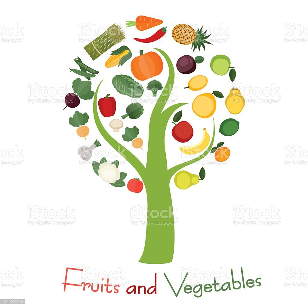 Tree With Fruits Part - 31: Tree With Fruits And Vegetables Royalty-free Stock Vector Art