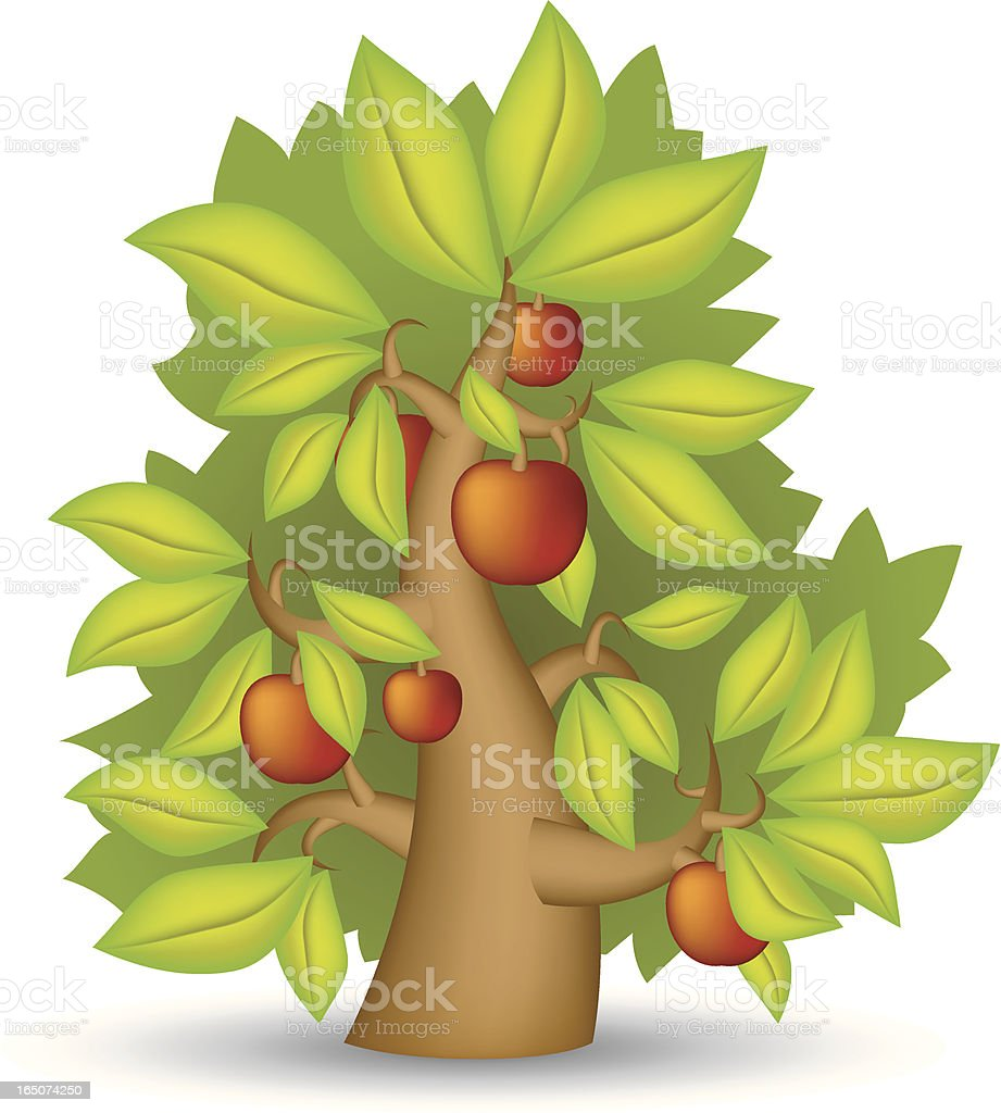 Tree with fruits royalty-free stock vector art