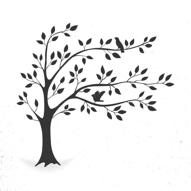 Tree with leaves and birds vector art illustration