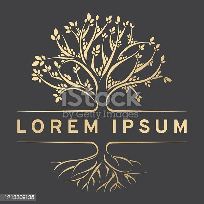 Gold design element. Vector illustration with place for your text