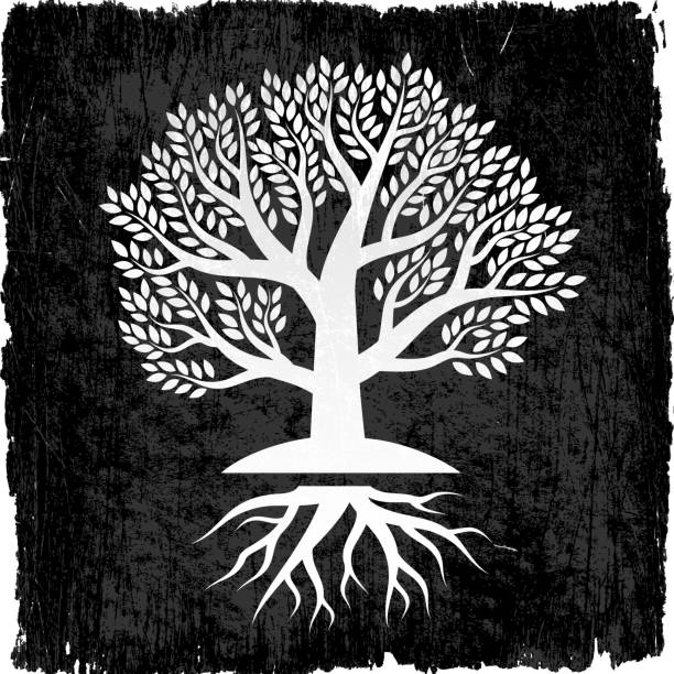 Tree with Roots on Black royalty free vector Background Tree with Roots on Black Grunge Background root hair stock illustrations