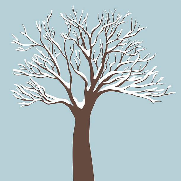 tree with snow on the branches - winterruhe stock-grafiken, -clipart, -cartoons und -symbole