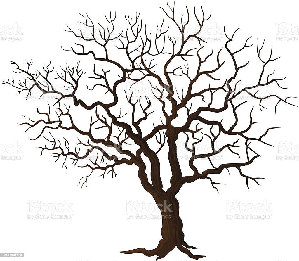Rvore sem folhas isolado no branco arte vetorial de - Malvorlage stammbaum ...