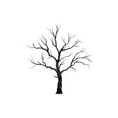 Tree without leaves. Nature sign Floral winter outdoor icon
