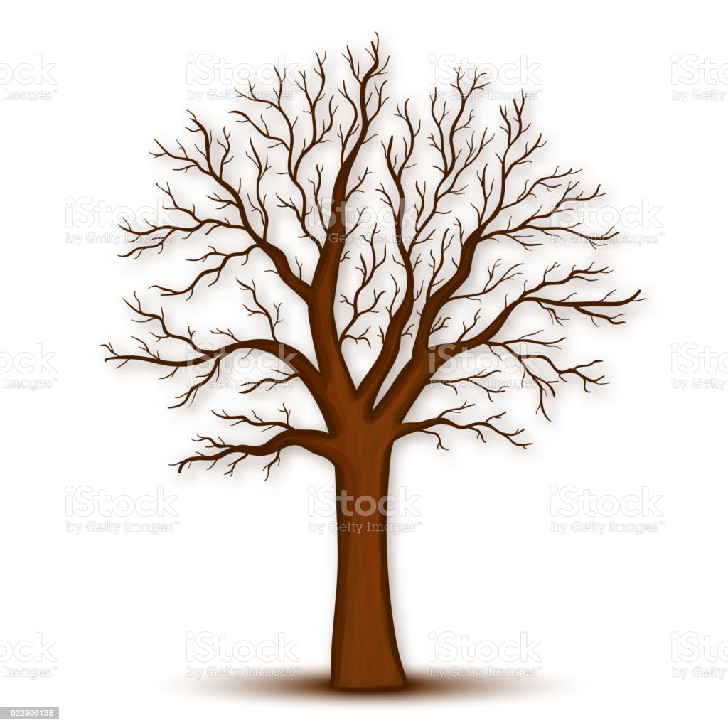 Tree without leaves vector vector art illustration