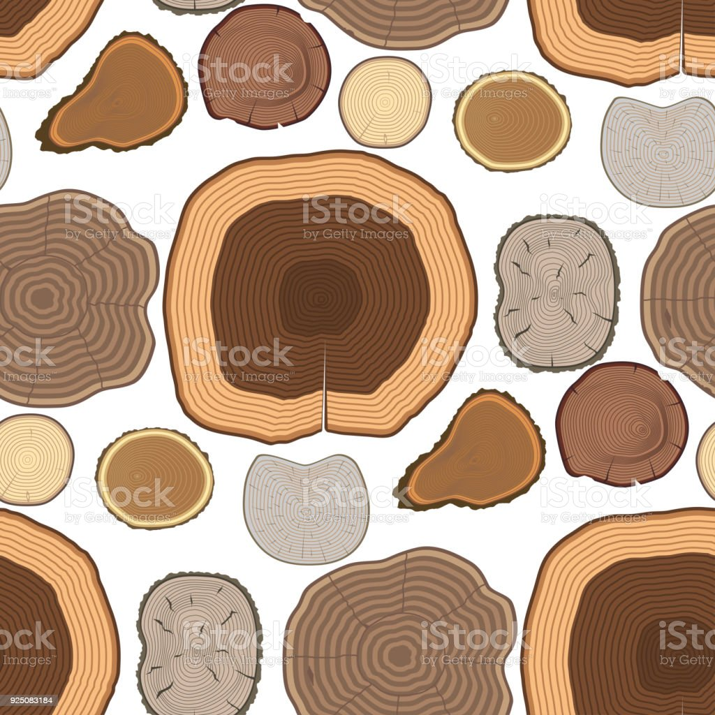 Tree wood trunk slice texture circle cut wooden raw material vector detail plant years history textured rough forest tree top seamless pattern background vector art illustration