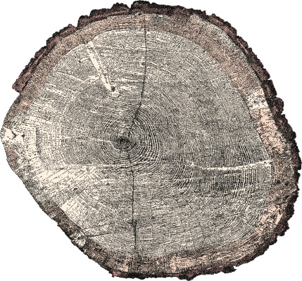 Tree x-section
