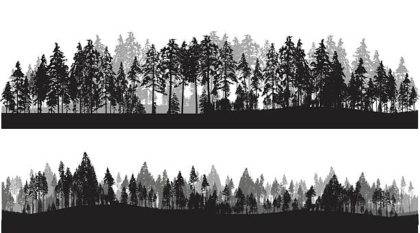 treeline-header - panorama stock-grafiken, -clipart, -cartoons und -symbole