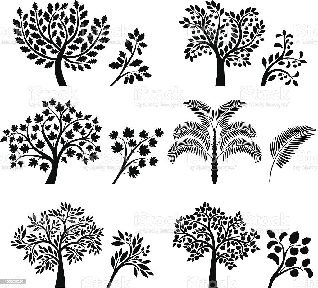 Trees and branches vector art illustration