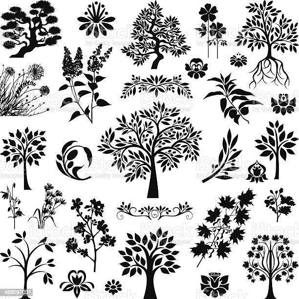 Trees and plants vector id488097031?b=1&k=6&m=488097031&s=612x612&h=kmeus8vlsdeaepsozmksifjvnry5o2m7k6hwgdvsf6g=
