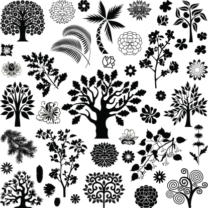 Trees and plants