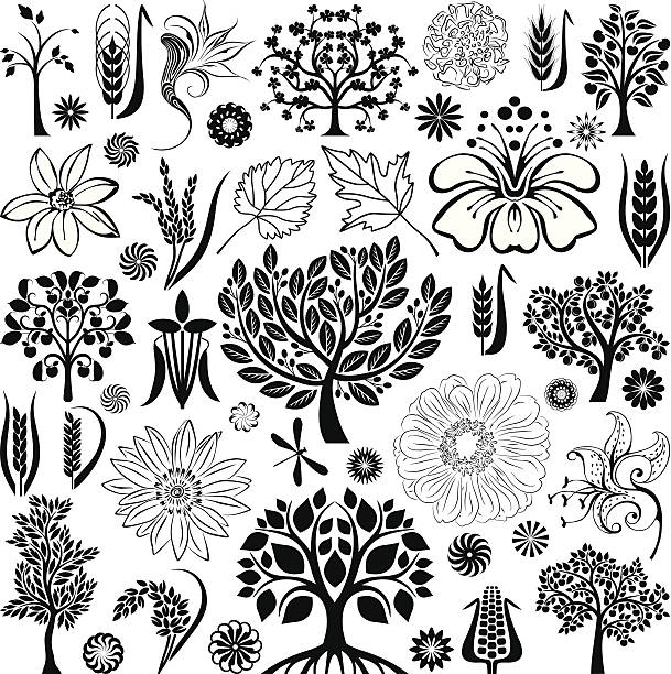 Trees and plants ollection of decorative trees, plants and flowers  apple blossom stock illustrations