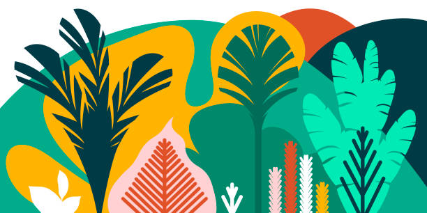 trees are broad-leaved tropical, ferns. flat style. preservation of the environment, forests. park, outdoor. vector illustration. - palm tree stock illustrations