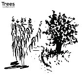 Trees collection. Ink landscape with trees